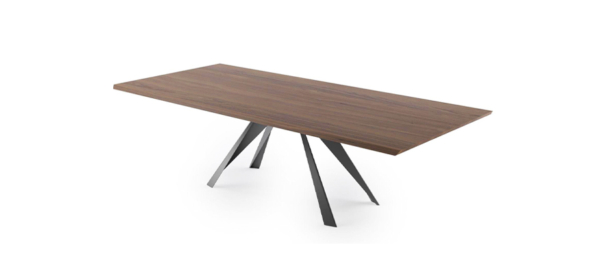 Large wooden dining table in brown colour and black legs.